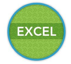 Excel_badge.png