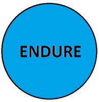 ENDURE.png