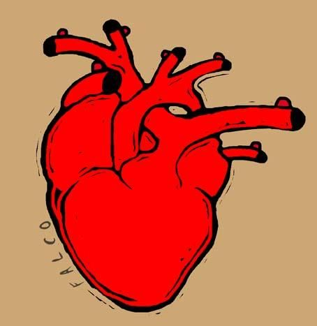 heart_190575
