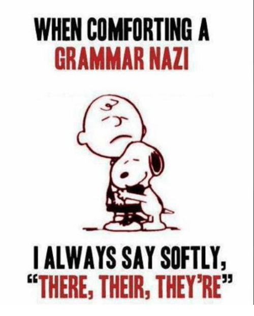 when-comforting-a-grammar-nazi-i-always-say-softly-there-20474531