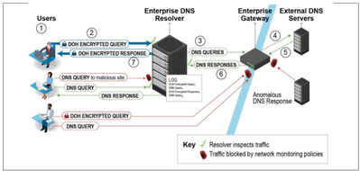 NSA recommended enterprise DNS architecture with DoH